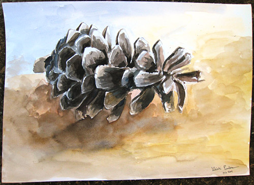 Pine Cone - Expanded